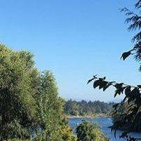 Lake Oswego Sunny Day Laurie Bornstein Homes